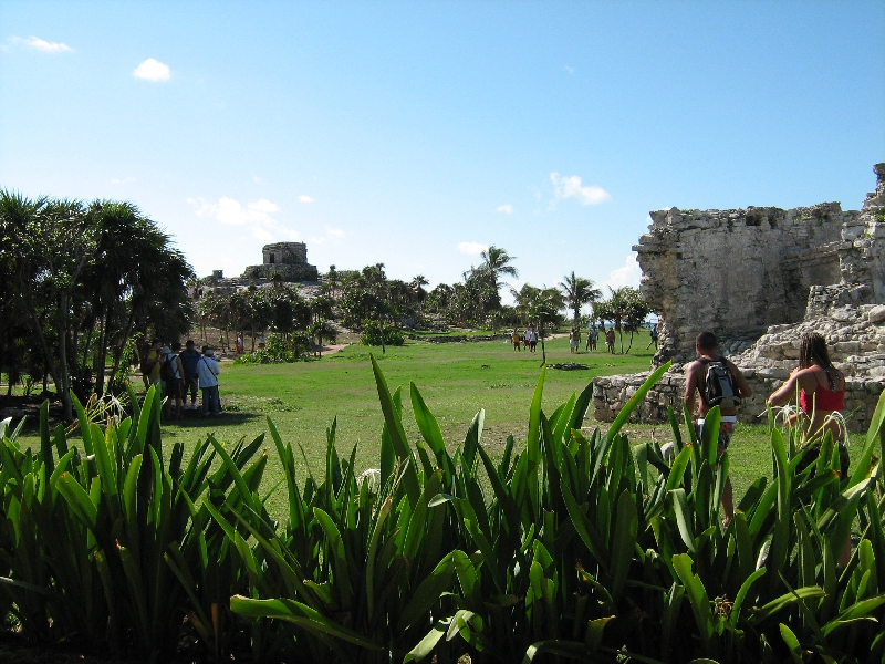 The green cliffs of the Maya site, Tulum Mexico