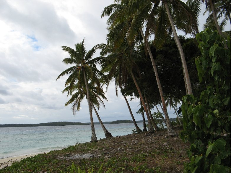 The beaches of Vava'u, Tonga