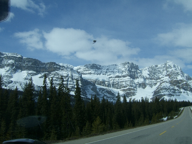 Pictures from our car, Canada