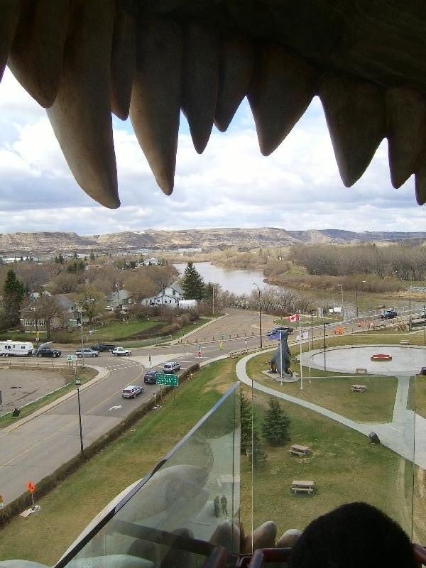 Looking through the Dinosaurs mouth, Calgary Canada