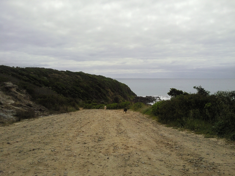 Driving up to Point Danger, Portland Australia