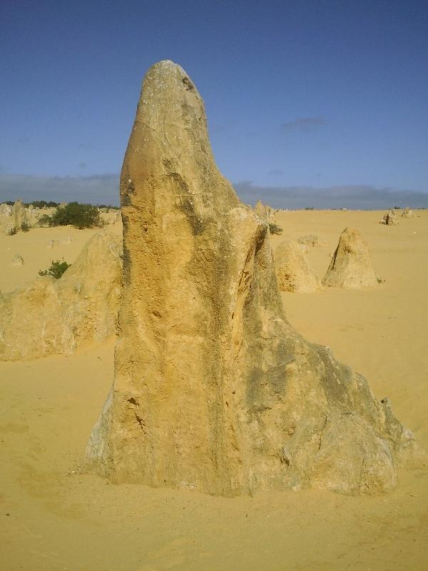 Pictures of the pinnacles, Australia