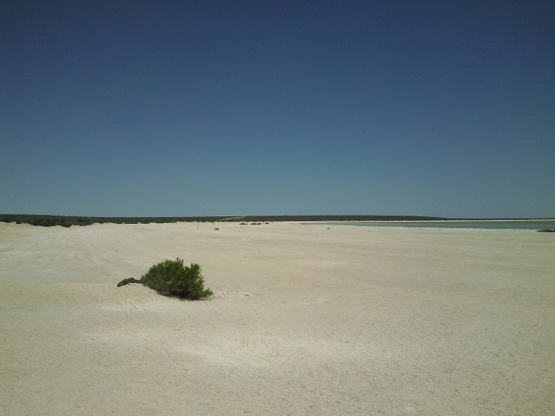The stretches of white shells, Shark Bay Australia