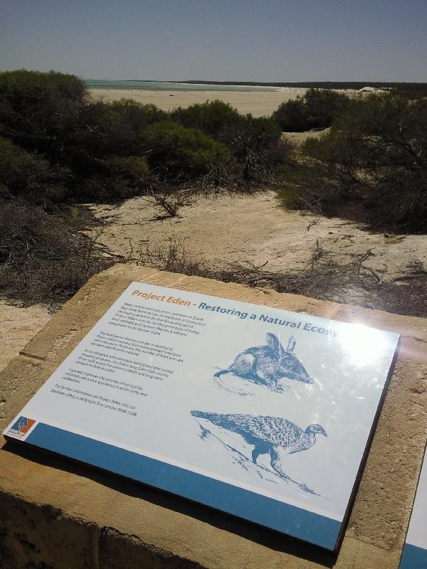 Pictures of Shark Bay landscape, Australia