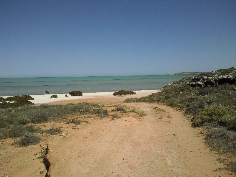 The beaches of Shark Bay, Shark Bay Australia