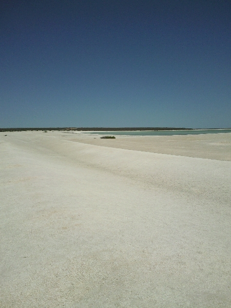 Pictures of Shell Beach in Shark Bay, Australia