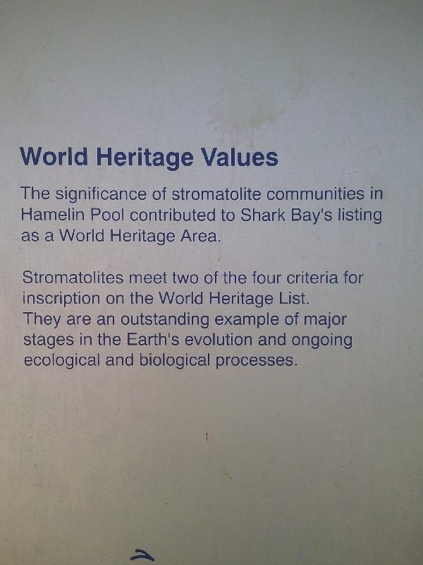 The history of Hamelin Pool, Australia