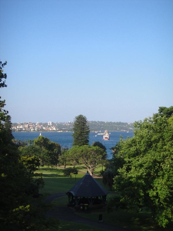 Looking out over the harbour, Sydney Australia