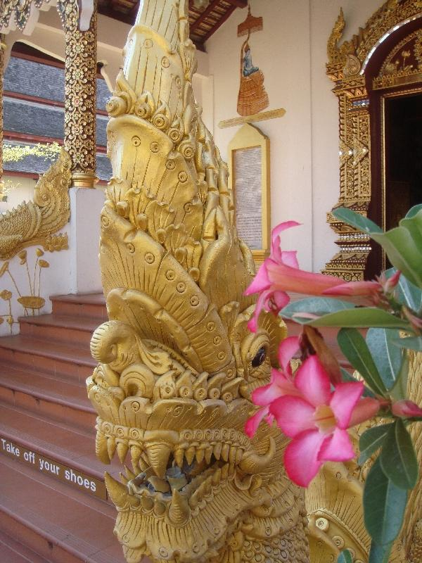 Golden Dragons for the Crystal Buddha, Chiang Mai Thailand
