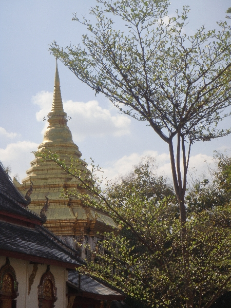 Chiang Mai Thailand Wat Chiang Man and the Stupa