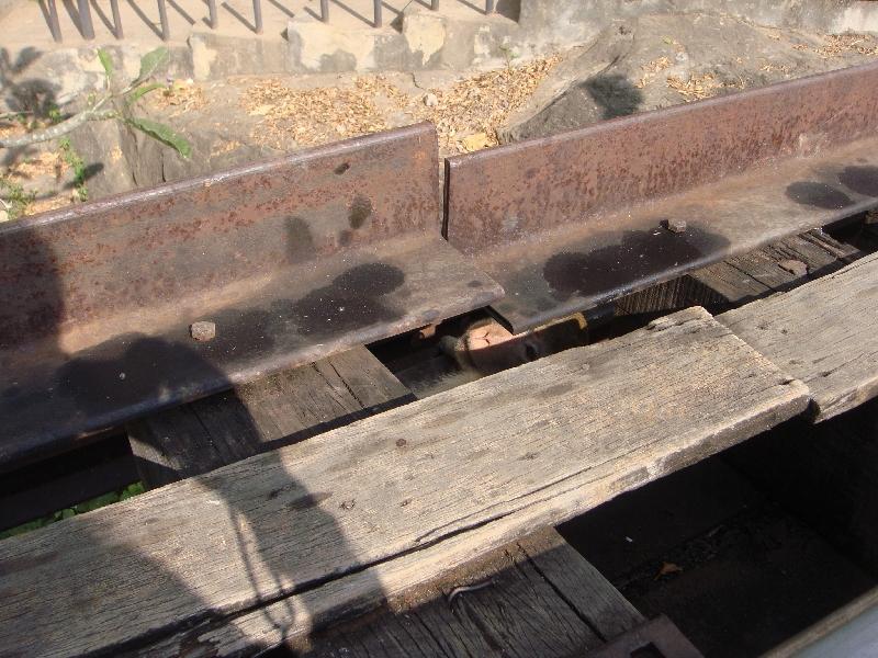 Kanchanaburi Thailand A monkey underneath the track!