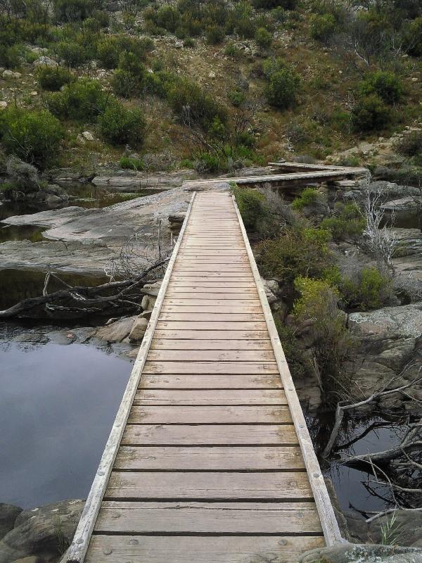 Boardwalk Snake Lagoon, Australia