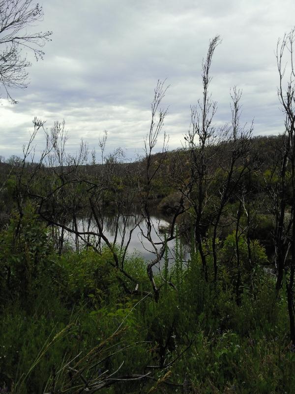 Snake Lagoon Hike, KI, Australia