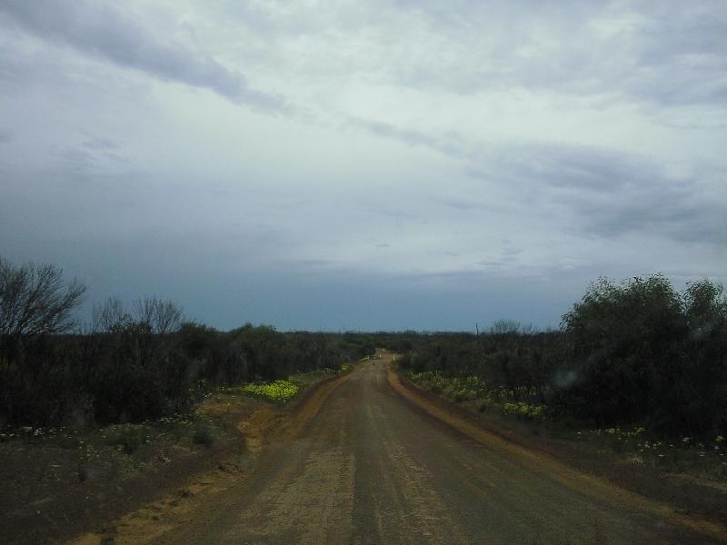 Route to Snake Lagoon, Australia