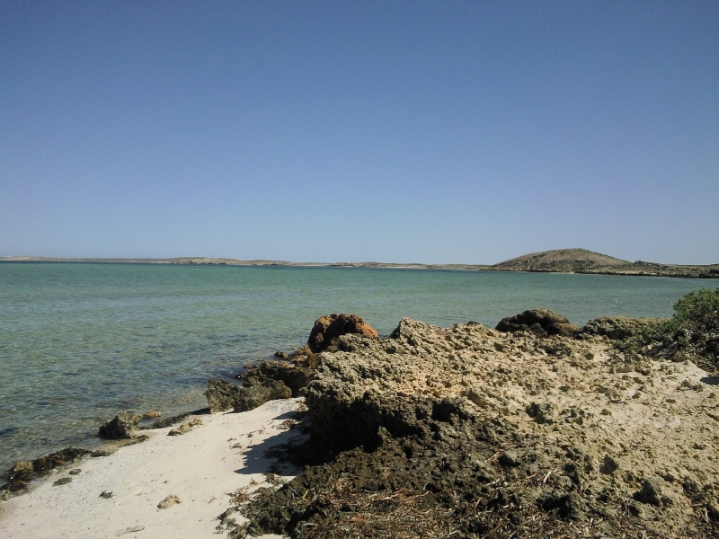 Pictures of Shark Bay, WA, Shark Bay Australia