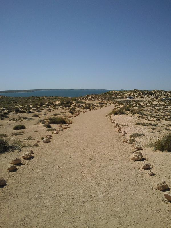 The walking path at Eagle Bluff, Shark Bay Australia