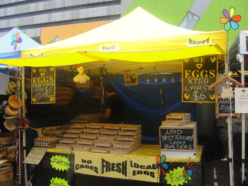 Fresh Eggs on the market in Brisbane, Australia