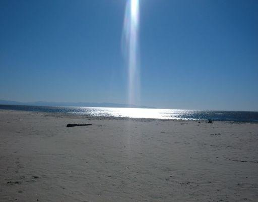 The amazing beach in Santa Cruz, San Francisco United States
