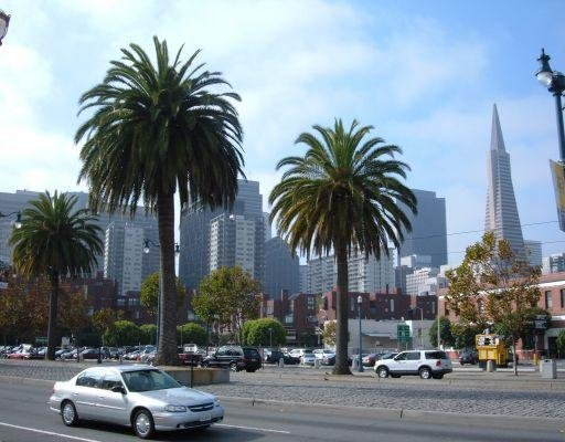 Pictures of San Francisco, United States