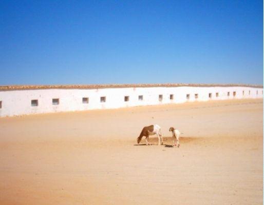Pictures of Western Algeria, Algeria