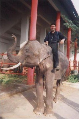 Photo of me on an elephant in Bangkok., Thailand