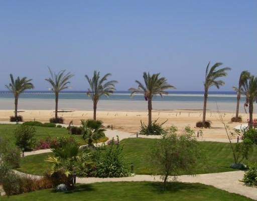 View from the Tulip Resort in Marsa Alam., Egypt