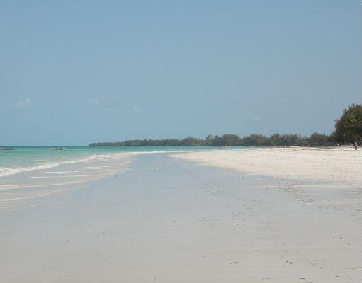 The beach of Kiwengwa in Zanzibar. Zanzibar City Tanzania Africa