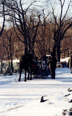 Horse-drawn carriage tours in Montreal, Canada., Canada