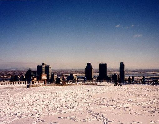 Skyline of Montreal in the snow., Canada