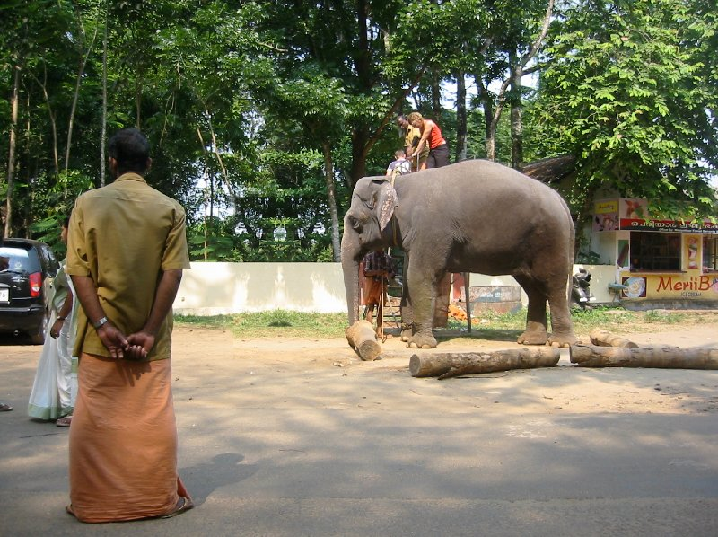 Kochi India Ready for an elephant ride in Kerala.