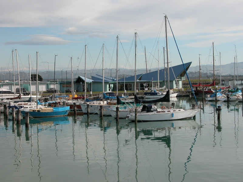 The fishing port of Napier - great restaurants Napier New Zealand Oceania