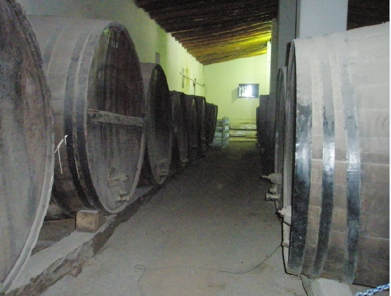 Wineries in Mendoza, Argentina, Argentina