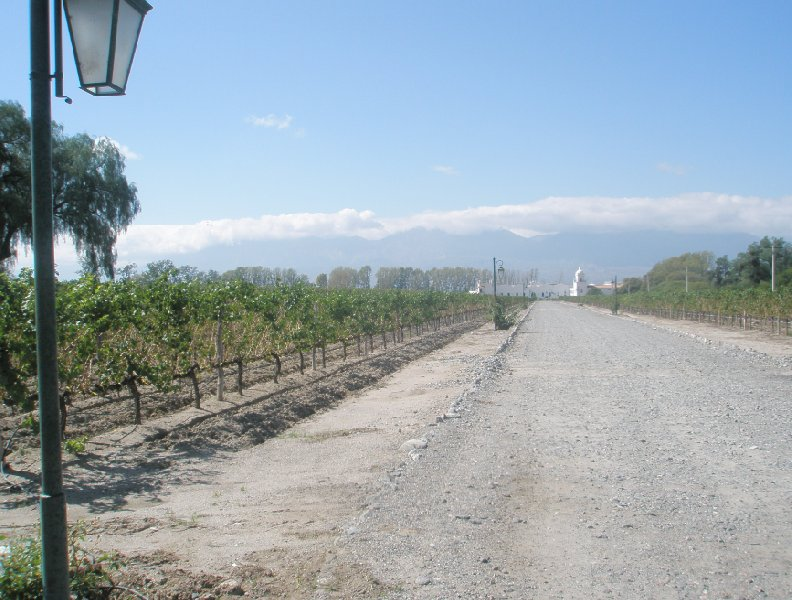 Photos of the Mendoza wine region in Argentina, Mendoza Argentina