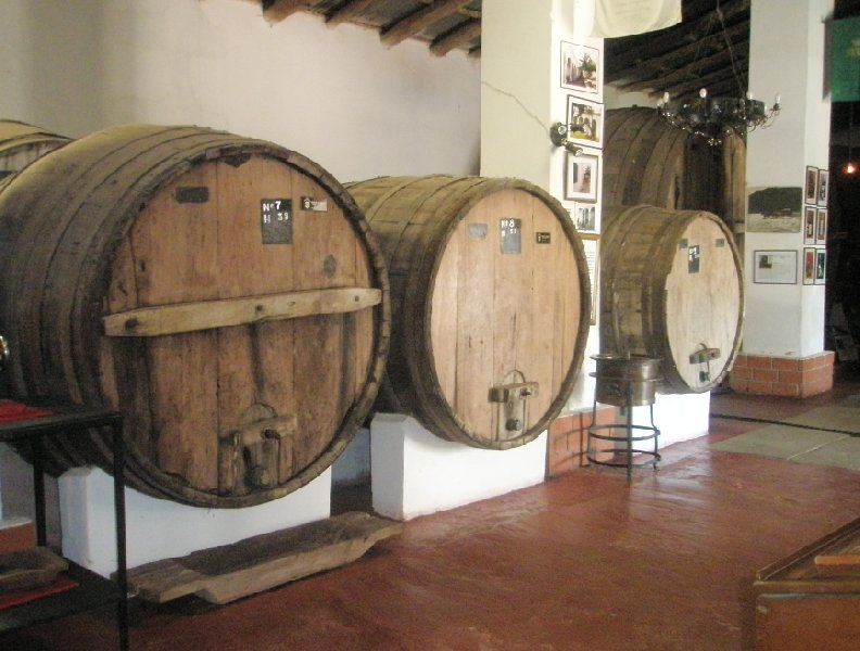 Pictures of a wine tasting in Mendoza, Argentina, Argentina