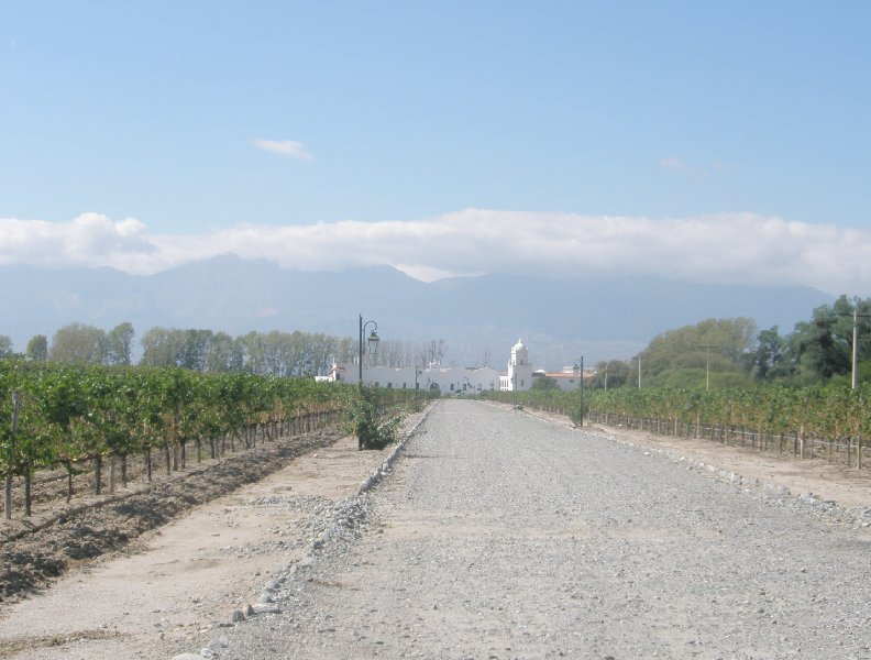 Cycling along Mendoza wine routes, Argentina, Argentina