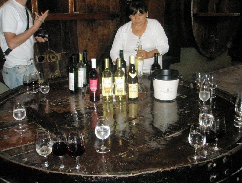 Mendoza wine tours, Argentina, Argentina