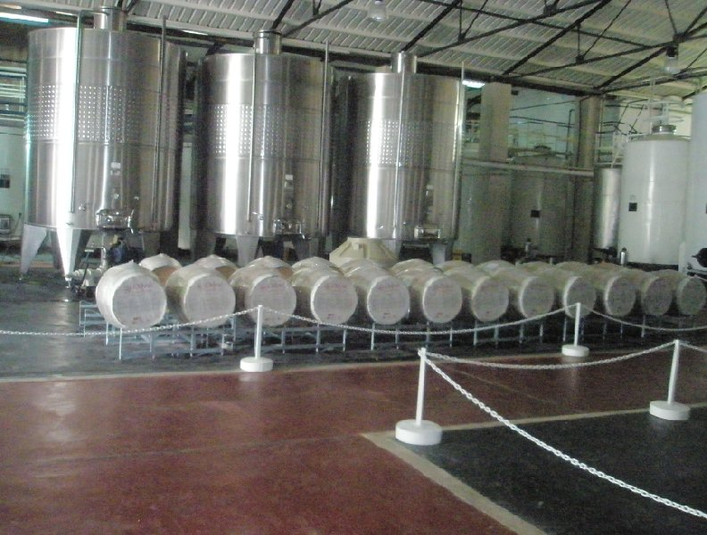 Tour to the Mendoza wineries, Argentina