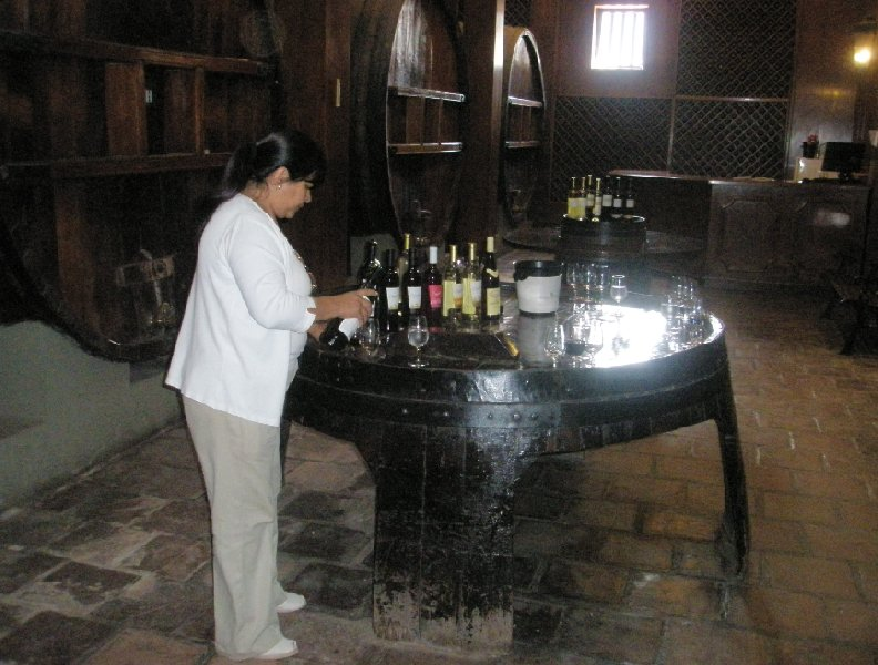 Mendoza red wine and white wine tastings, Argentina, Argentina