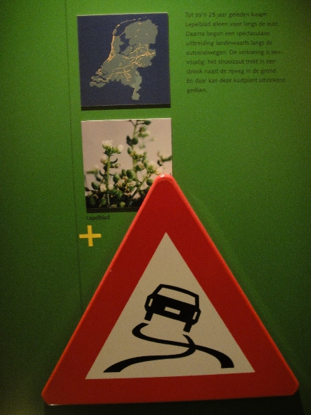 Something about road signs at the Natuurhistorisch Museum in Maastricht, Maastricht Netherlands