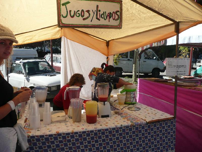 Fresh fruit smoothies in El Bolson, Argentina