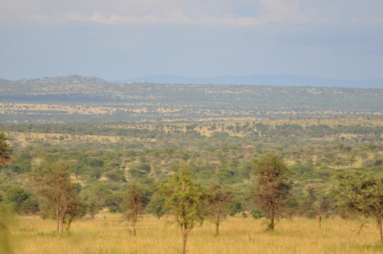 Photos of the Serengeti National Park in Tanzania, Tanzania