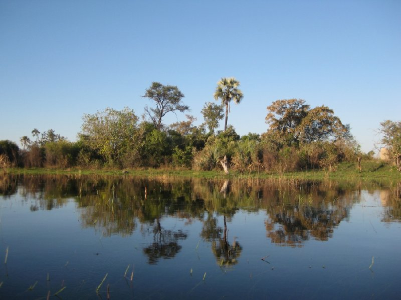 Pictures of the Okavango Delta, Botswana, Botswana