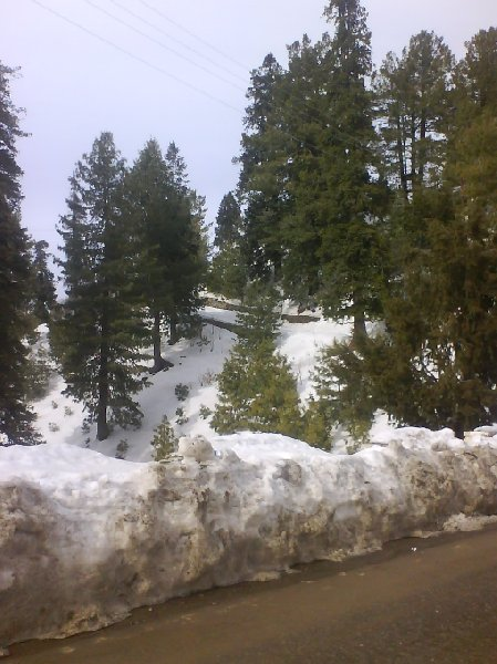 Wintertime in Murree, Pakistan, Pakistan
