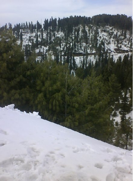 From Islamabad to Murree in Pakistan, Murree Pakistan