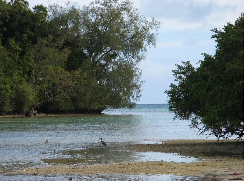 Nuku'alofa Tonga Photos of Tonga, Polynesia