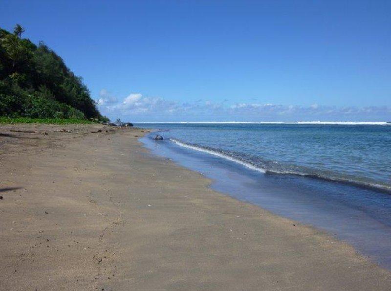Beach near Port Résolution, Vanuatu, Vanuatu