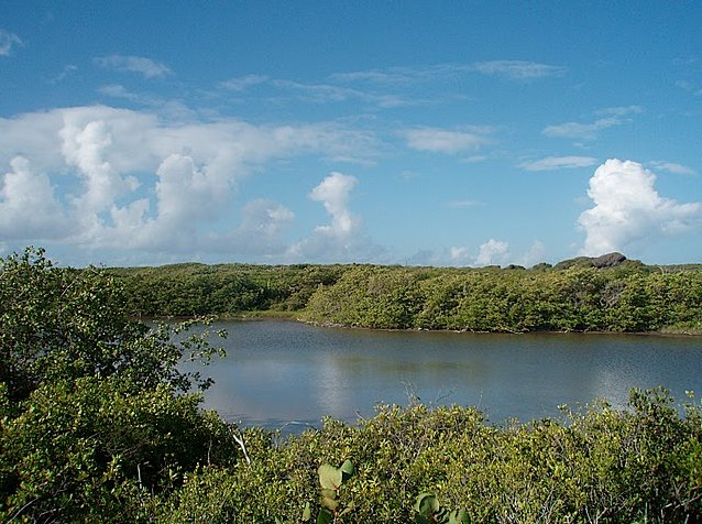 Inland pond in Aguilla, Lesser Antilles The Valley  