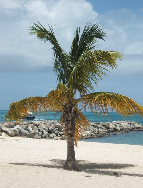 On the beach in Sint Maarten, Caribbean holiday, Philipsburg Netherlands Antilles