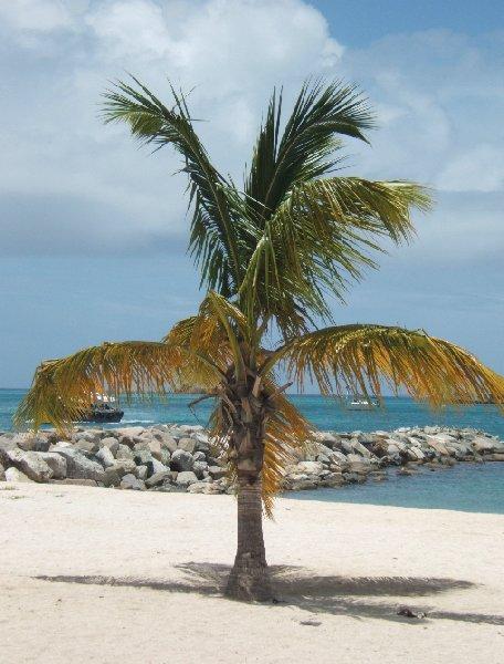 Philipsburg Netherlands Antilles On the beach in Sint Maarten, Caribbean holiday