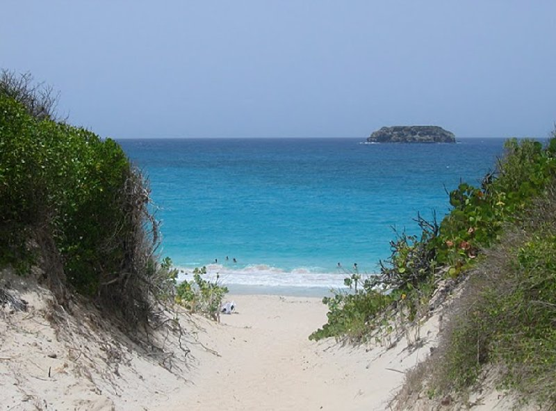 Photos of Saline Beach, Saint Barthelemy, Saint Barthelemy